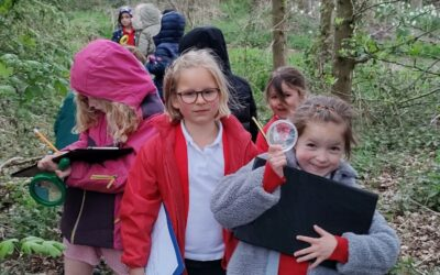 A Trip to Willoughby Wood